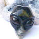 Star Being oceaan jaspis alien skull groot
