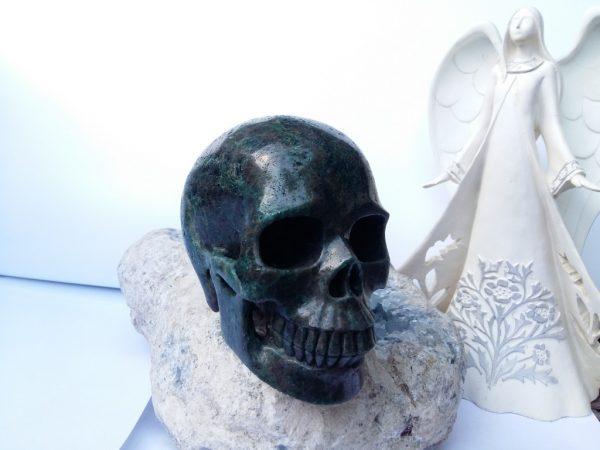 grote apatiet skull