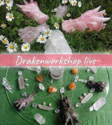 Drakenworkshop live bij mij in de praktijk