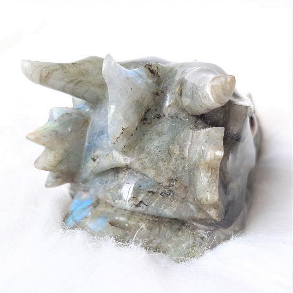Labradorietdraak 10.5 cm - De Lichtkracht Academie