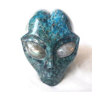 Star Being apatiet skull - De Lichtkracht Academie - https://fannyvanderhorst.nl/