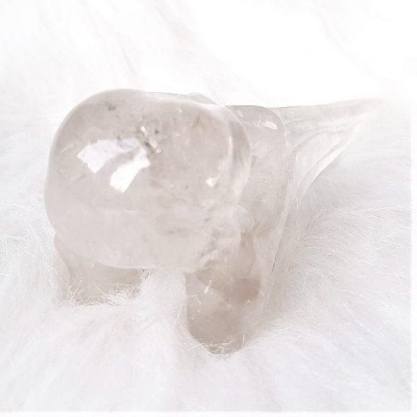 Bergkristal ravenschedel - https://fannyvanderhorst.nl/product-categorie/kristalshop/
