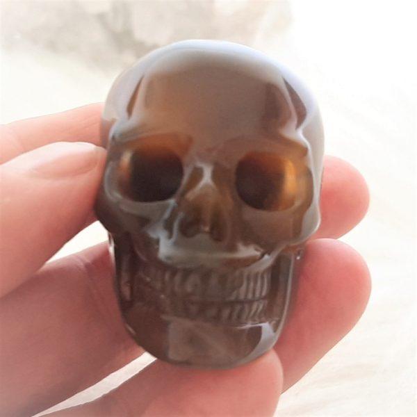 Kristallen schedel carneool 4.2 cm - De Lichtkracht Academie - fannyvanderhorst.nl